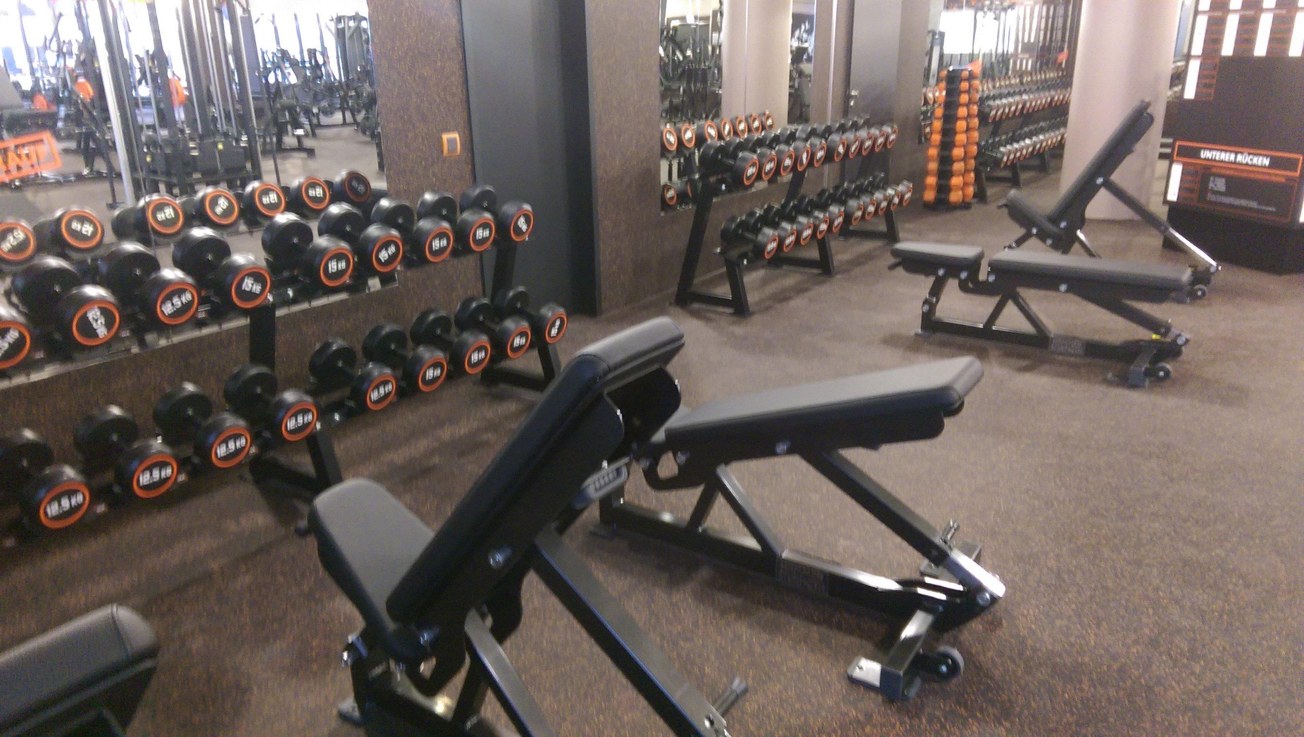 Fitnesstrainer B-Lizenz als Fernstudium?