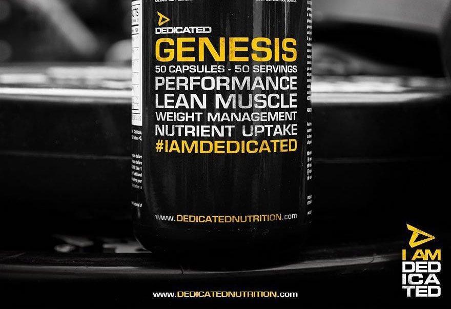 Dedicated Headerbild Genesis